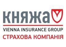 Логотип Княжа м. Вінниця