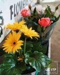 КвітоЦентр, гуртівня квітів - фото 2