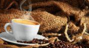 Львівська майстерня шоколаду, кав'ярня - фото 1