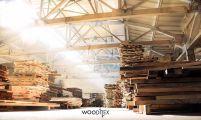 Wooditex, вироби з натуральної деревини - фото 1