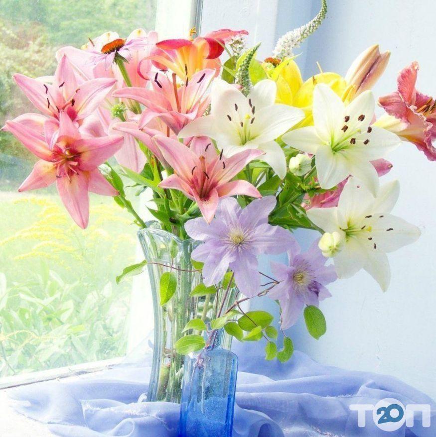 Авеста Флора, квіткова студія - фото 4