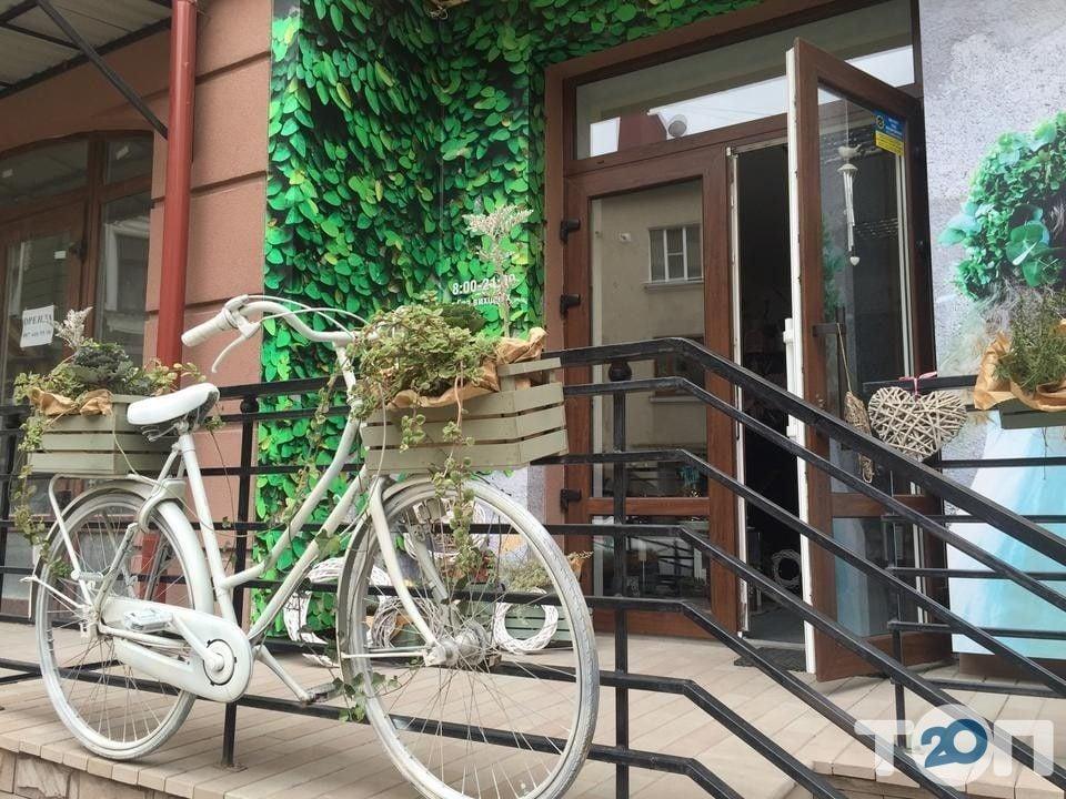 Flor Decor, салон флористики та декору - фото 1