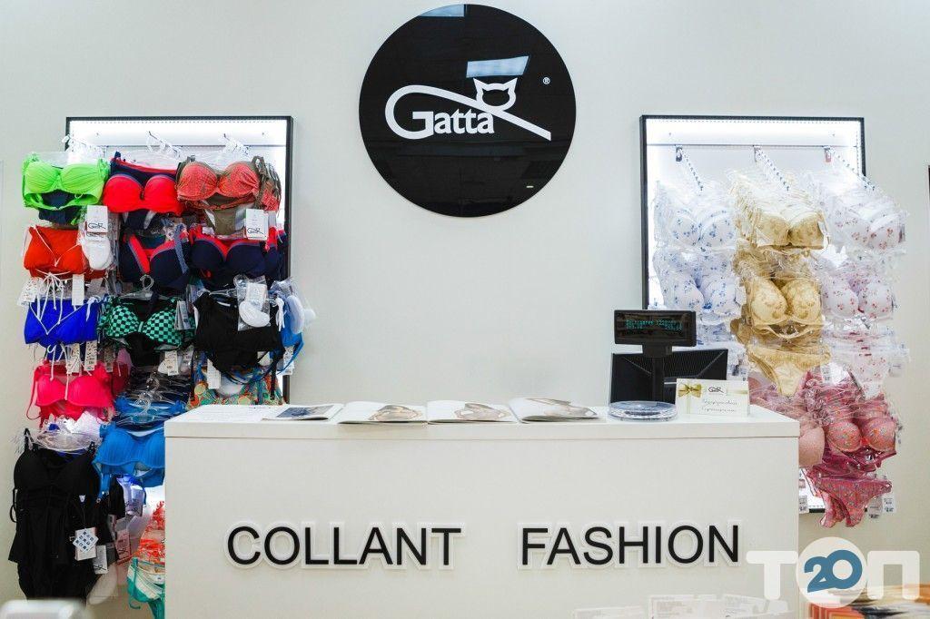 Gatta, магазин білизни - фото 1