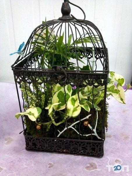 Green flora, склад-магазин квітів - фото 2