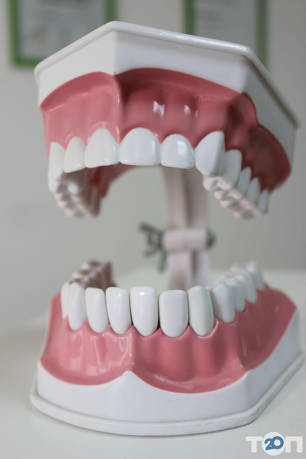 Kristal, стоматологія - фото 20