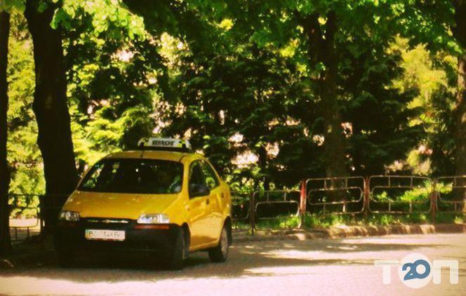 Пілот, таксі - фото 4
