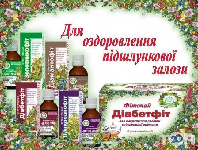 Логотип Скарбниця здоров'я / Сокровищница здоровья, магазин фитопрепаратов г. Кропивницкий