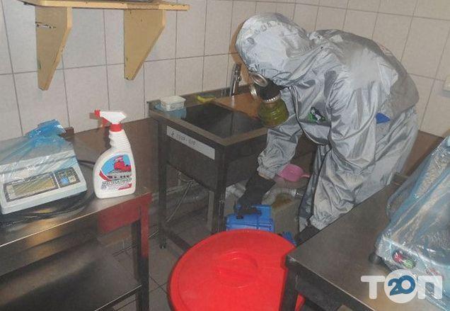 Профдезінфекція, знищення шкідників - фото 3