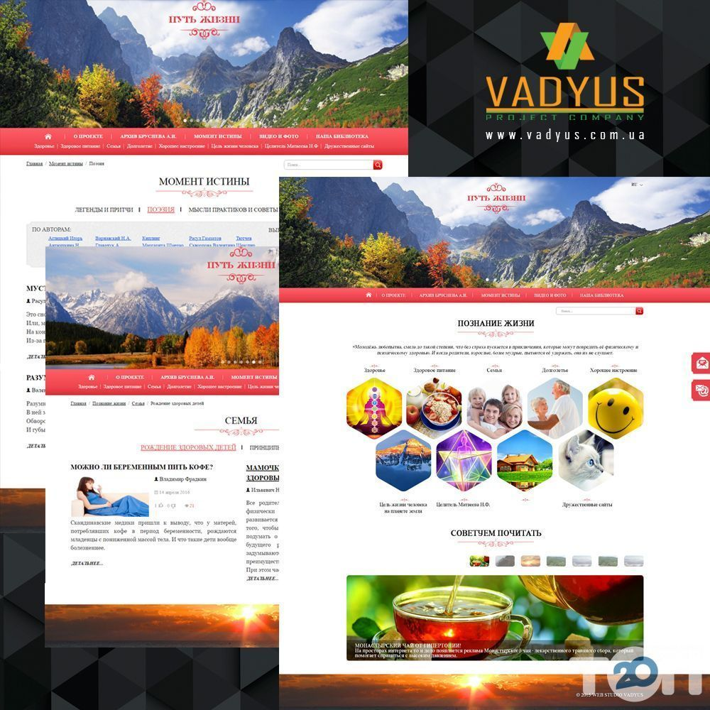 VADYUS, веб студія - фото 6