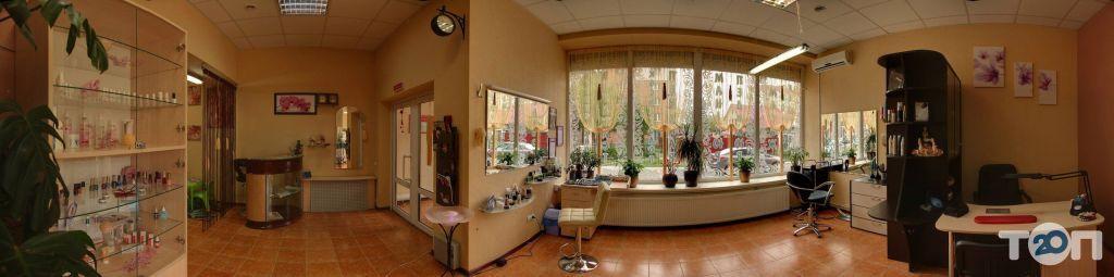 Вуаль, салон краси - фото 1