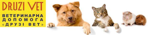 Druzi Vet, ветеринарна клініка - фото 1