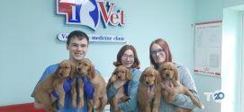 IVet, клініка ветеринарної медицини фото