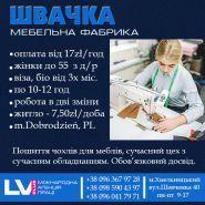 LVI PLUS, міжнародна агенція праці фото