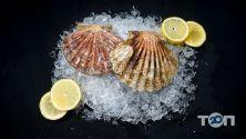 Seadora, сервіс доставки риби і морепродуктів - фото 1