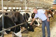 Villa Milk, виробник натуральних молочних продуктів фото