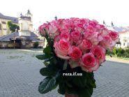 Роза, доставка квітів - фото 1