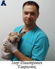 Айболит, ветеринарна клініка фото