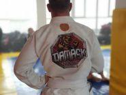 DAMASK, академія змішаних бойових мистецтв фото