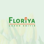 Флорія, салон квітів фото