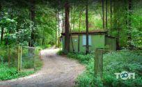 Лісовий берег, база відпочинку - фото 1
