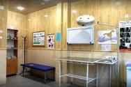 ВетМір, ветеринарна цілодобова клініка фото