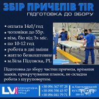 LVI PLUS, міжнародна агенція праці - фото 9