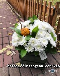 Violy flowers, оформлення свят - фото 10