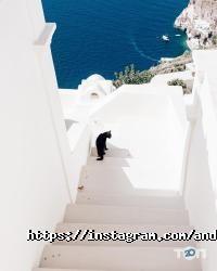 Студія весільних фотографій - фото 10