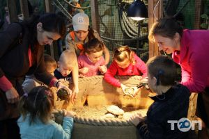 Multizoo, контактний зоопарк - фото 2