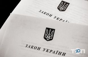 Гарєєв Євгеній, адвокат  - фото 1