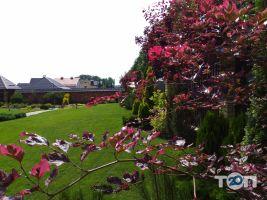 Амітіс, садово-ландшафтний центр - фото 10