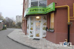 Барвінок, центр здоров'я - фото 2