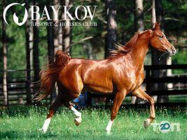 Baykov Resort & Horses Club, заміський кінний клуб - фото 1