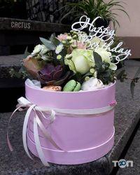 Cactus, магазин квітів - фото 1