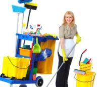 Експерт чистоти - фото 1