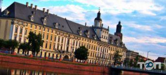 EuroStudent, вища освіта в Польщі - фото 1