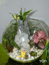 Green flora, склад-магазин квітів - фото 1