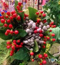 Green flora, склад-магазин квітів - фото 17