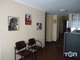 Ветеринарная клиника «Доктор Хвостус» - фото 9
