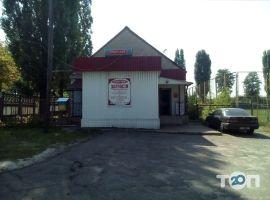 Іппон-авто, магазин автозапчастин та СТО фото