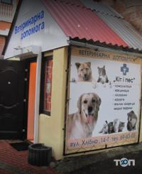 Кіт і Пес, ветеринарна клініка - фото 3