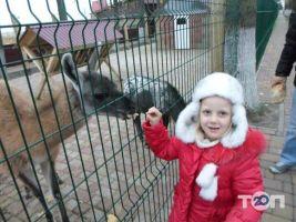Крайня хата, приватний зоопарк - фото 1
