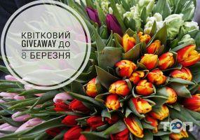 КвітоЦентр, гуртівня квітів - фото 1
