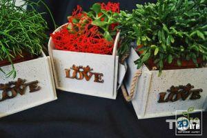 КвітоЦентр, гуртівня квітів - фото 11