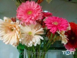 Люба Флора - фото 10