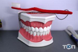 M-Dental, стоматологія - фото 4