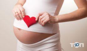 Ремедивін, центр репродуктивної медицини - фото 4