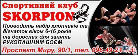 Скорпион, спортивный клуб фото