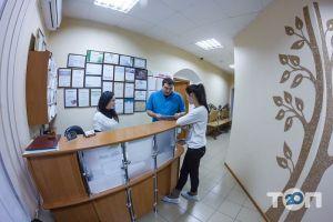 Сучасна стоматологія, стоматолоогічна клініка - фото 4