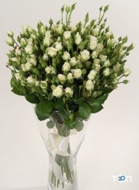 Країна квітів, доставка квітів та букетів - фото 4